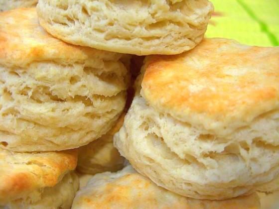 Biscuit24