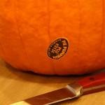 Pumpkin Pie From Real Pumpkin- Part 1