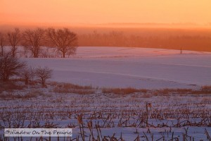 Winter_Sunrise03