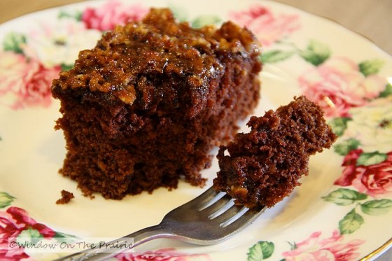 chocolate chip cookies chocolate oatmeal cake chocolate oatmeal cake ...