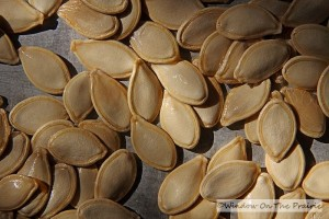 Roasted_Pumpkin_Seeds02