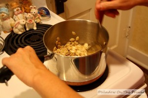 Roasted_Pumpkin_Seeds06