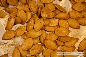 Roasted_Pumpkin_Seeds091