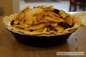 Apple_Cranberry_Pie15