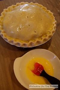 Apple_Cranberry_Pie16