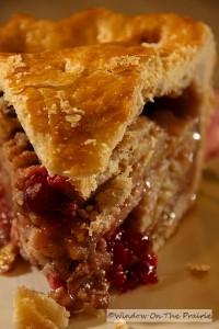 Apple_Cranberry_Pie22