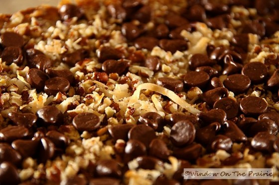 how to make homemade chocolate praline