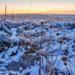 The Tallgrass Prairie In Winter