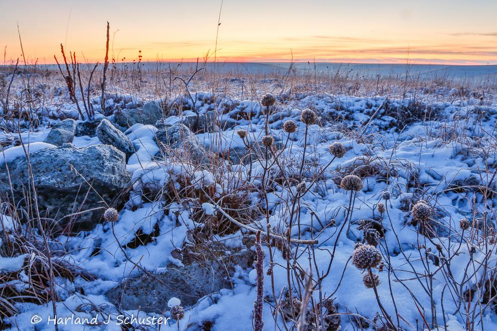 The Tallgrass Prairie In Winter 171 Window On The Prairie