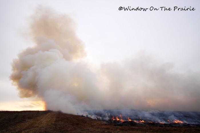 Prairie_Fire03