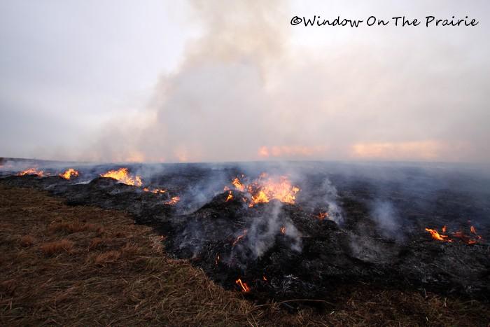 Prairie_Fire04