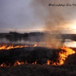 Controlled Burn 2013
