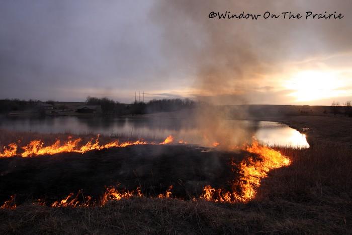 Prairie_Fire07