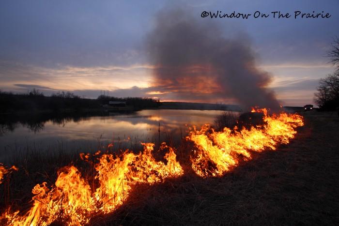 Prairie_Fire14