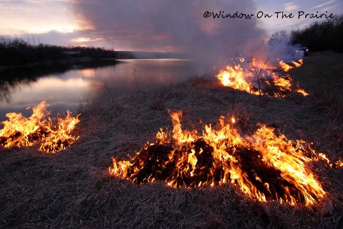 Prairie_Fire15
