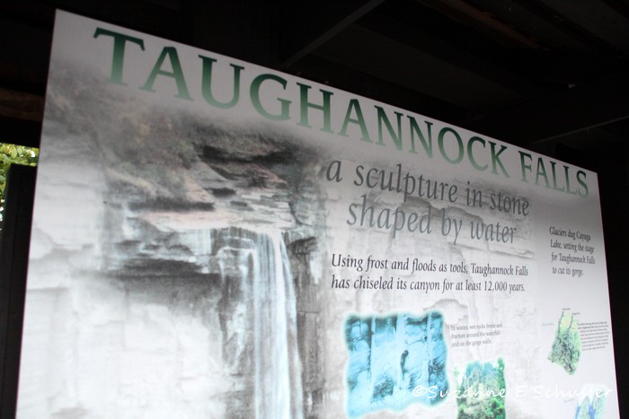 Taughannock Falls04