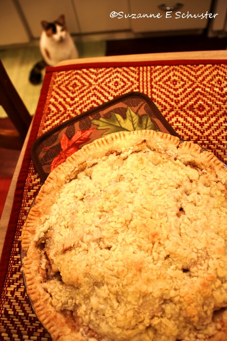 Apple_Crumb_Pie08