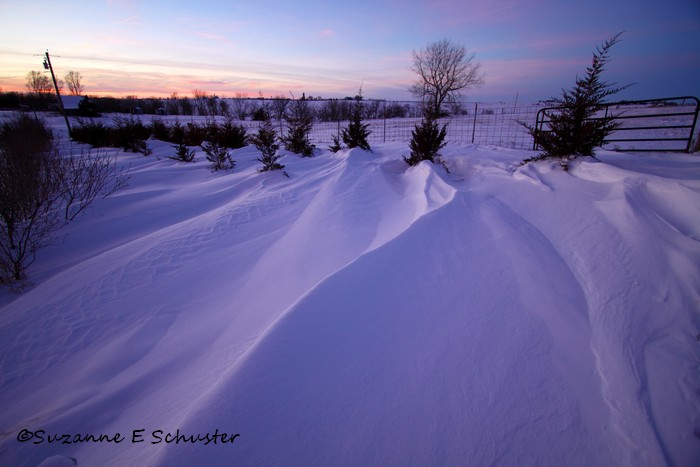 Snowy_Twilight06
