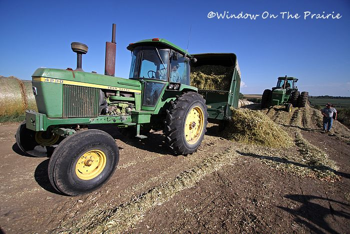 Making silage in 2012